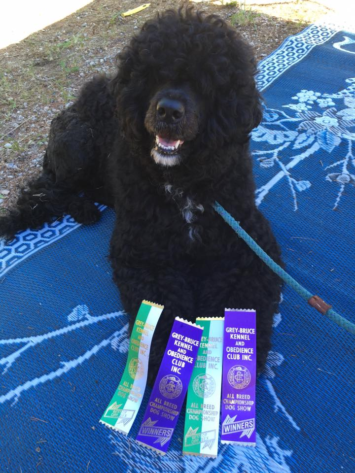 Ceu with her ribbons!